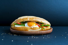Vietnamese sandwich. On the background Royalty Free Stock Images