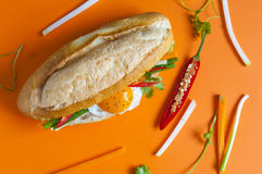 Vietnamese sandwich. On the background Royalty Free Stock Photos