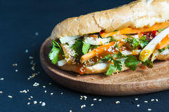 Vietnamese sandwich Royalty Free Stock Photo
