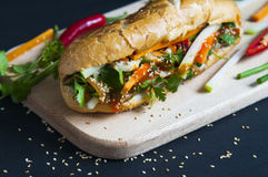Vietnamese sandwich. On the background Royalty Free Stock Photography