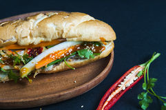 Vietnamese sandwich on the background. Vietnamese sandwich on the dark background Stock Photos