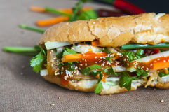 Vietnamese sandwich on the background Royalty Free Stock Photography
