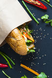 Vietnamese sandwich on the background. Vietnamese sandwich on the dark background Royalty Free Stock Images