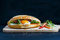 Vietnamese sandwich on the background Stock Images