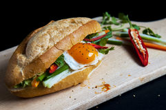 Vietnamese sandwich on the background. Vietnamese sandwich on the dark background Stock Photo