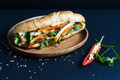 Vietnamese sandwich on the background Stock Image