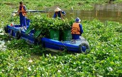 Vietnamese sanitation worker working on water Stock Image