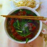 Vietnamese soeppho royalty-vrije stock foto's