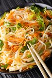 Vietnamese spicy salad with chicken, rice noodles, carrots and g Stock Images
