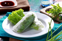 Vietnamese spring roll Royalty Free Stock Photo