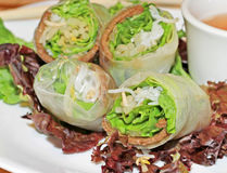 Vietnamese Spring Rolls Stock Photography