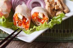 Vietnamese spring rolls with chicken and vegetables Royalty Free Stock Images