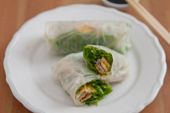 Vietnamese spring rolls with egg omlette Royalty Free Stock Photos