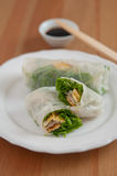 Vietnamese spring rolls with egg omlette Royalty Free Stock Image
