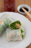Vietnamese spring rolls with egg omlette Royalty Free Stock Images