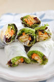 Vietnamese spring rolls Stock Photo