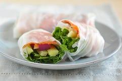 Vietnamese Spring Rolls Stock Photos
