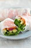 Vietnamese Spring Rolls Royalty Free Stock Photo