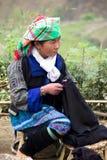 Vietnamese StammenVrouw Royalty-vrije Stock Afbeeldingen
