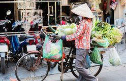 Vietnamese street vendors act and sell their vegetables and fruit products in Hanoi, Vietnam stock photography