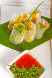 Vietnamese style summer rolls Royalty Free Stock Images