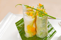 Vietnamese style summer rolls Stock Images