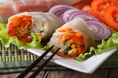 Vietnamese vegetarian vegetable spring rolls macro. Horizontal Royalty Free Stock Photo