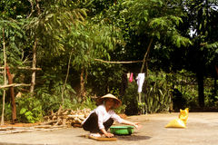 Vietnamese village Stock Photography