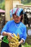 Vietnamese vrouw in het Noorden van Vietnam stock afbeeldingen