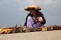 Vietnamese vrouwen die drijfhout in Hoi An verzamelen Royalty-vrije Stock Fotografie