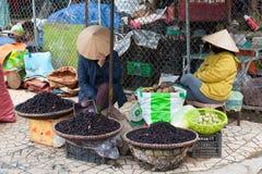 Vietnamese vrouwen die moerbeiboom verkopen Stock Afbeeldingen