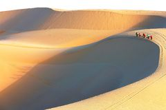 Vietnamese walking at sand dunes with shadow during sunrise. Vietnamese women walking along the edge of sand dunes with their shadow casting on the sand during Stock Image