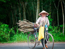 Vietnamese Woman. A Vietnamese woman gathering sticks pauses on her bicycle to smile Stock Photography