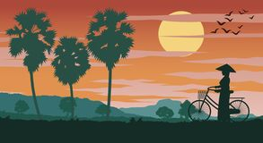 Vietnamese woman hold bicycle walk pass rice field and palm tree on sunset time vector illustration