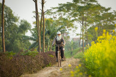 Vietnamese woman riding bicycle Royalty Free Stock Images