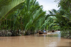 Vietnamese woman rowing a boat in Mekong River Royalty Free Stock Photo
