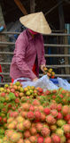 Vietnamese woman selling many tropical fruits Stock Photography