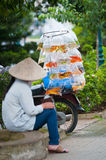 Vietnamese woman sells aquarian fish Royalty Free Stock Images