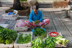 Vietnamese woman is sorting vegetables at the street market, Nha Trang, Vietnam. Nha Trang, Vietnam - December 02, 2015: Vietnamese woman is sorting vegetables Royalty Free Stock Images