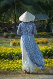 Vietnamese woman with traditional dress stock photo
