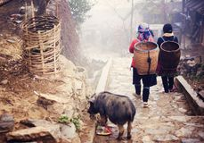 Vietnamese woman walking to Sapa. Hmong women are on a way from their village to Sapa, Vietnam stock image