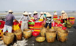 Vietnamese woman working on beach Royalty Free Stock Image