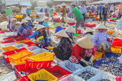 Vietnamese woman working at Long Hai fish market Royalty Free Stock Photos