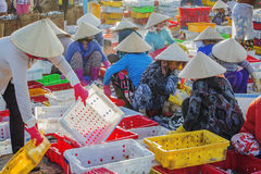 Vietnamese woman working at Long Hai fish market Royalty Free Stock Photo