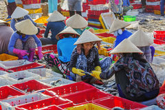 Vietnamese woman working at Long Hai fish market Stock Photos