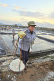 Vietnamese women are burdening hard to collect salt from the extract fields to the storage fields Royalty Free Stock Photography