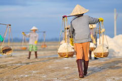 Vietnamese women are burdening hard to collect salt from the extract fields to the storage fields. NINH HOA, VIETNAM - MARCH 2, 2012: Vietnamese women are Stock Photography