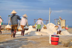 Vietnamese women are burdening hard to collect salt from the extract fields to the storage fields. NINH HOA, VIETNAM - MARCH 2, 2012: Vietnamese women are Royalty Free Stock Images