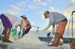 Vietnamese women are burdening hard to collect salt from the extract fields to the storage fields. NINH HOA, VIETNAM - MARCH 2, 2012: Vietnamese women are Stock Photo