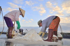 Vietnamese women are burdening hard to collect salt from the extract fields to the storage fields Stock Photos
